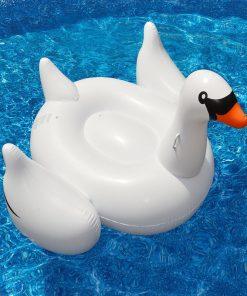 Kæmpe svane badedyr